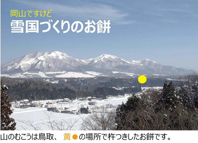 ひめのもち 製造 販売 岡山の雪国 ひるぜん農園